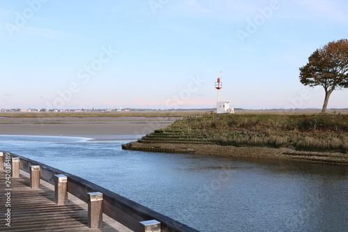 Fotografie, Obraz  Estuaire de baie de somme