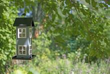Cute Birdhouse Hanging In Green Garden Concept