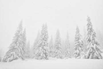 Winter alpine landscape in National Park Retezat, Carpathians, Romania, Europe. Snow covered moutains scenery.