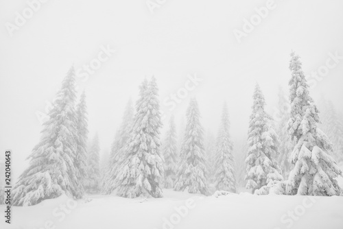 Winter alpine landscape in National Park Retezat, Carpathians, Romania, Europe. Snow covered moutains scenery.