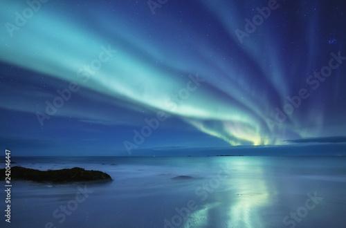 Aurora borealis on the Lofoten islands, Norway Canvas-taulu