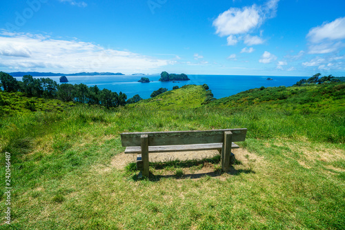 Foto op Canvas Cathedral Cove wooden bench at cathedral cove,coromandel peninsula, new zealand 1