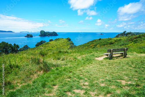 Foto op Canvas Cathedral Cove wooden bench at cathedral cove,coromandel peninsula, new zealand 2
