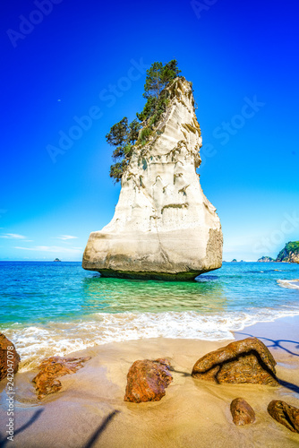 Foto op Plexiglas Cathedral Cove sandstone monolith,cathedral cove,coromandel peninsula,new zealand 3