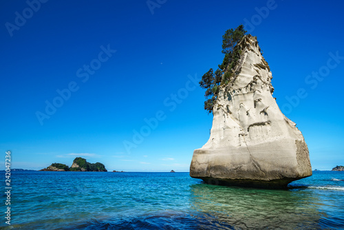 Foto op Canvas Cathedral Cove sandstone monolith,cathedral cove,coromandel peninsula,new zealand 11