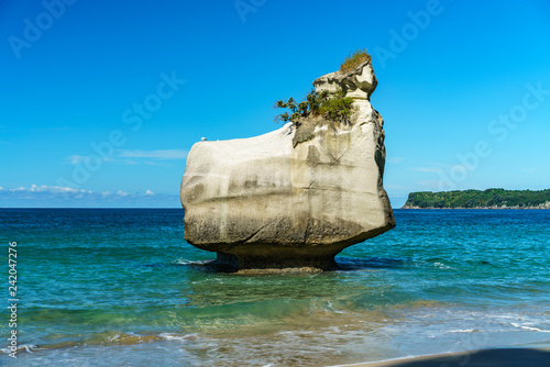 Foto op Canvas Cathedral Cove sandstone monolith,cathedral cove,coromandel peninsula,new zealand 12