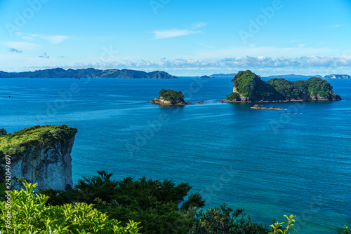 Foto op Canvas Cathedral Cove the way from cathedral cove,coromandel peninsula,new zealand 6