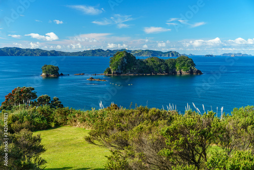 Foto op Canvas Cathedral Cove the way from cathedral cove,coromandel peninsula,new zealand 8