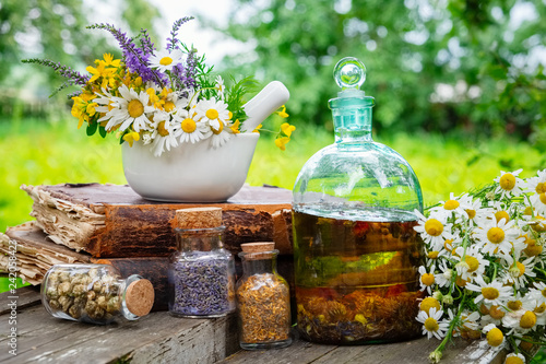 Fototapeta Mortar of healing herbs, bottles of healthy essential oil or infusion and dry medicinal herbs, old books and bunch of chamomile plant. Herbal medicine. obraz