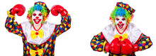Funny Male Clown With Boxing Gloves