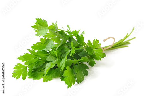 Poster Aromatische parsley bunch