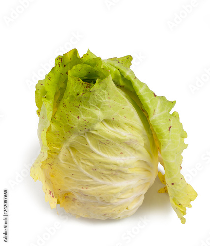 variegated radicchio