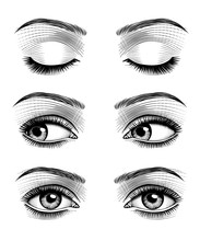 Women's Luxurious Eyes With Pe...