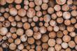 Holzpolter, gestapelt, Holz, Wald, Harz, Natur, Hintergrundbild
