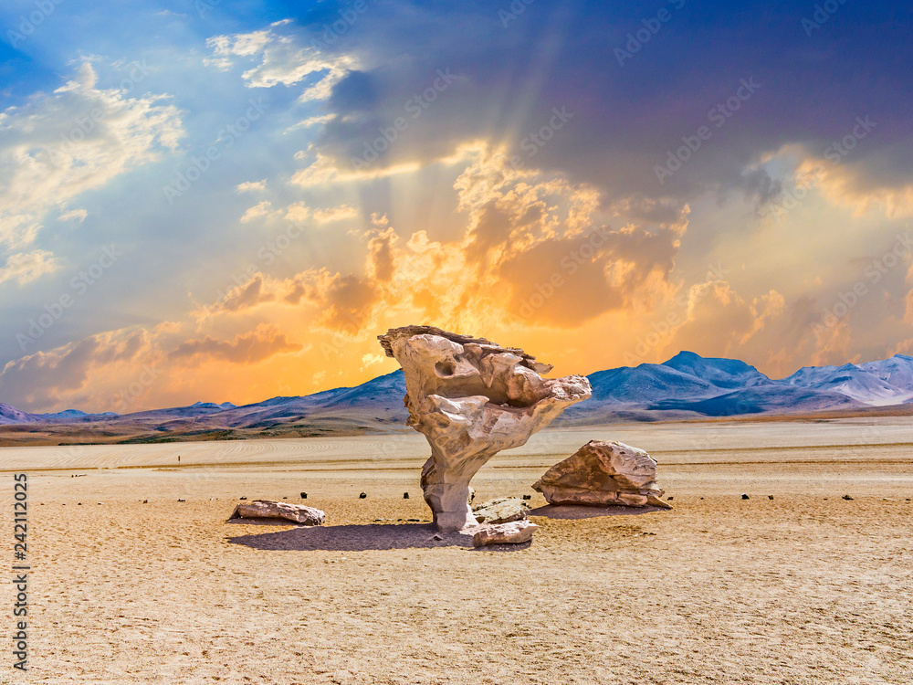 Arbol de Piedra (tree of rock), the famous stone tree rock formation created by wind, in the Siloli desert in Bolivia