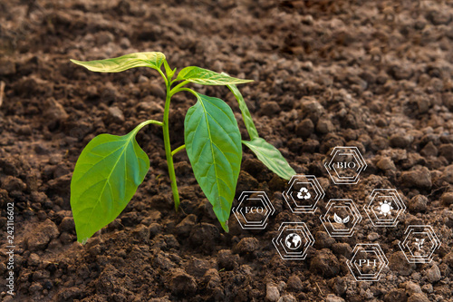 Agricultural badges for farmer and agriculture, ecology and the study of innovat Wallpaper Mural
