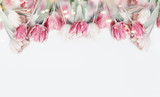 Fototapeta Tulipany - Lovely pastel color tulips border on white background with bokeh. Springtime flowers, top view. Spring nature and holidays concept. Copy space for your design. Layout for greeting card