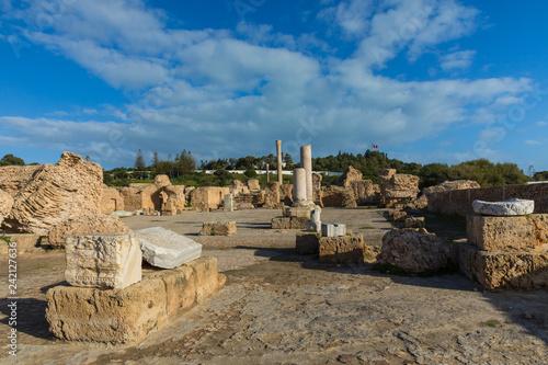 Deurstickers Historisch geb. Ruins of the ancient Carthage city, Tunis, Tunisia, North Africa.