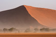 Sandsturm im Namib-Naukluft-Nationalpark in der Sossusvlei-Region in Namibia