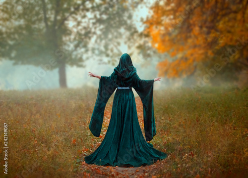 Fotografie, Obraz  young priestess holds a secret rite of sacrifice, is alone in the autumn forest on a large glade with fallen orange leaves