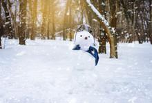 Sculpture Of Snow. Funny Snowm...