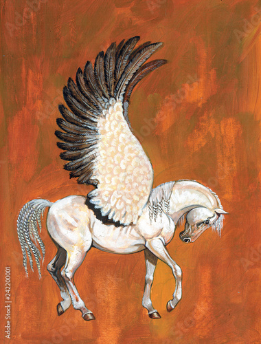 Fototapeta Pegasus illustration. White horse with wings acrylic picture.