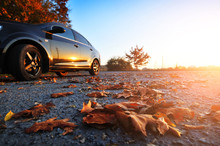 Car On The Road With Fallen Leaves And Trees Against Sky With Sunset