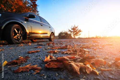 Fotografie, Obraz  Car on the road with fallen leaves and trees against sky with sunset