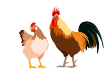 Hen And Rooster Couple Vector ...