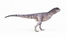 Illustration Of A Carnotaurus