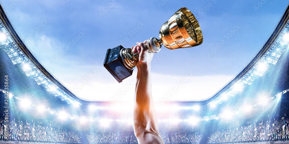 Fototapeta His great victory