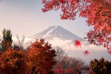 Fuji-San Mountain In Red Leave...