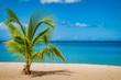 Grand Anse Beach, Grenada Island, Caribbean