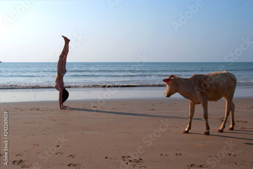 Canvas-taulu young woman doing handstand on the beach