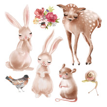 Set Of Cute Forest, Woodland Baby Animals - Deer, Bunny, Bird, Snail, Mouse And Floral Arrangement, Bouquet, Flowers Composition