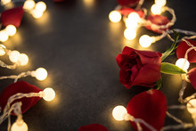 Red Rose Petals In The Light / Dreamy Romantic Valentine's Day Background Material