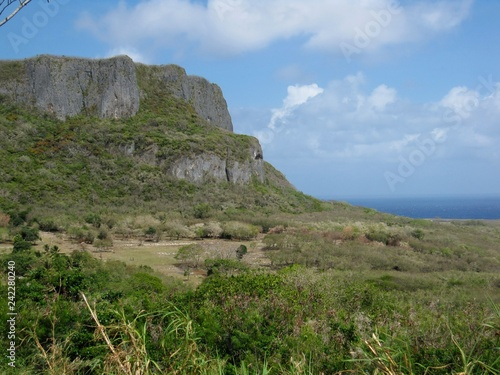 Fotografie, Obraz  Close up of the Suicide Cliffs of Saipan, Northern Mariana Islands where thousands of Japanese jumped off to die rather than surrender to American forces during the World War 11