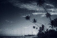 Rain On Tropical Island Beach. Water Drops On The Glass And Dark Palm Tree Silhouettes.