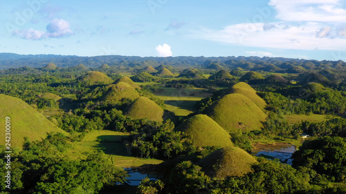 Foto  chocolate hill in aerial view, Bohol Philippines