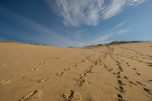 The Great Dune Of Pilat, France, Europe