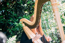 Woman Playing Harp In A Garden