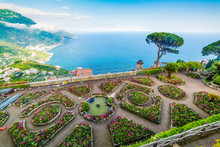 Flowers And Pine Trees In Ravello Coast