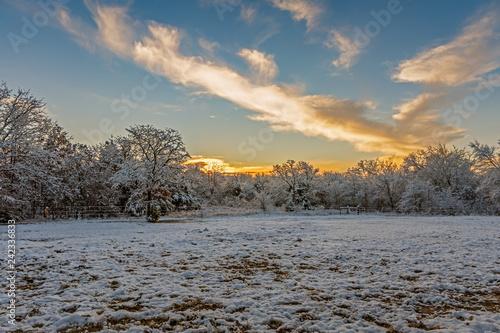 Fotografiet  Winter Sunrise