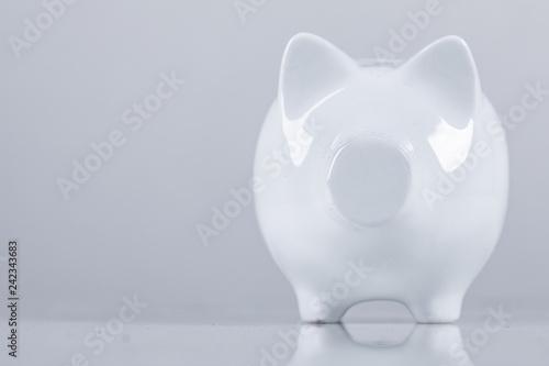 Foto op Aluminium Hoogte schaal piggybank