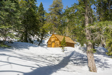 Locked Wooden Cabin On Mount San Jacinto, San Bernardino National Forest, California