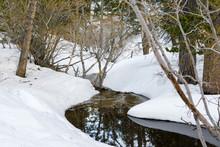 Winding Creek, Pine Trees And Snow In Mount San Jacinto State Park, San Bernardino National Forest, California