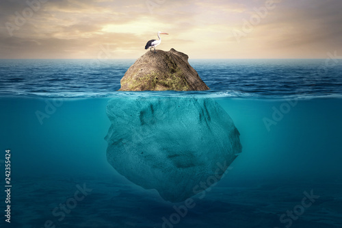 Fotografie, Obraz  Beautiful underwater scenery with a small island above which is crested by stork