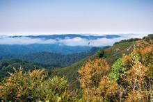 Fog Lingering Over The Hills A...
