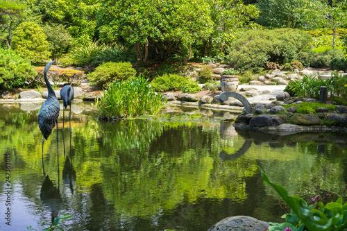 Fotografie, Obraz  Man made pond surrounded by lush vegetation, Shore Acres State Park Botanical Ga