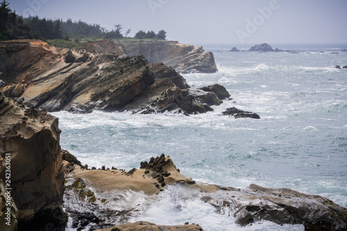 Photo Dramatic shoreline with strange rock formations at Shores Acres State Park, Coos
